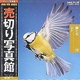 売切り写真館 JFIシリーズ 29 鳥たち