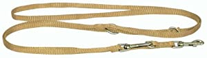 Hamilton 3/8-Inch Single Thick Nylon European Dog Leash, Gold
