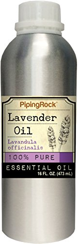 Lavender Essential Oil 16 oz (473 mL) 100% Pure -Therapeutic Grade (Lavender Essential Oil 16 Oz compare prices)