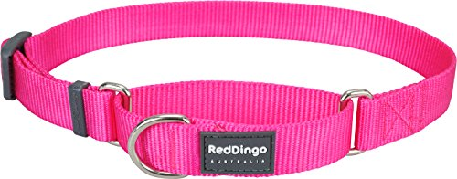 Red Dingo Plain Hot Pink martingala collare di cane (15mm x 25-39 cm)