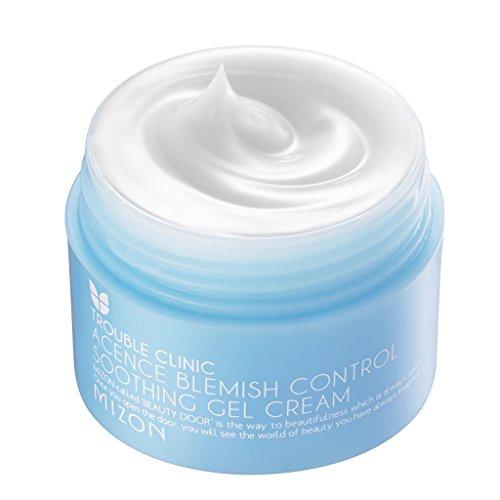 mizon-acence-blemish-control-soothing-gel-cream-50ml-by-punnada
