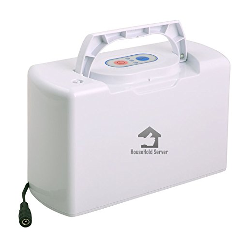 HouseHold Server (TM)Portable Oxygen Bar Machine with Two Battery for travelling and car use