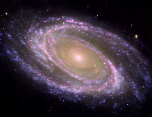 M81 Galaxy Pink; Nasa Space Hubble/Spitzer Telescopes, 8 X 10 Color