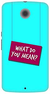 The Racoon Lean printed designer hard back mobile phone case cover for Google Nexus 6. (Where Do Y)