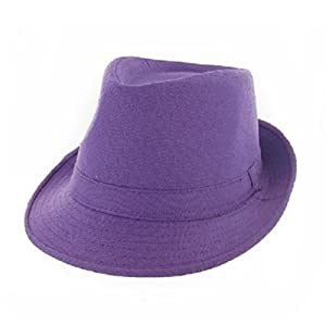 Fashion Fedora Hat #035530