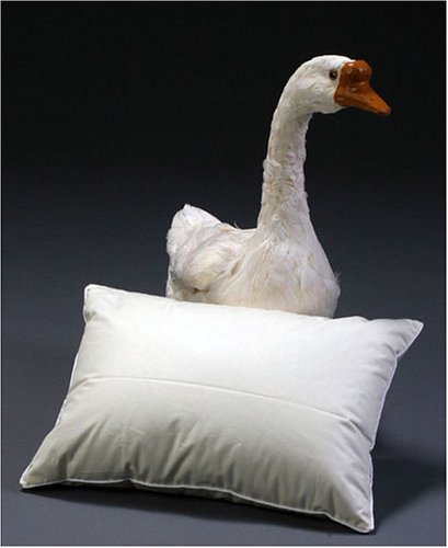 Travel Pillow with 700 Fill Power Goose Down