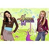 Hannah Montana Wall Mural