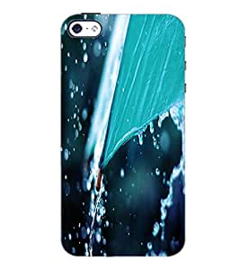 PrintDhaba Rain D-2288 Back Case Cover for APPLE IPHONE 5S (Multi-Coloured)