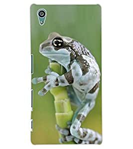 ColourCraft Funny Frog Design Back Case Cover for SONY XPERIA Z5