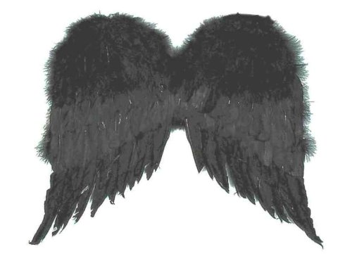 Forum Novelties Women's Large Feather Costume Wings