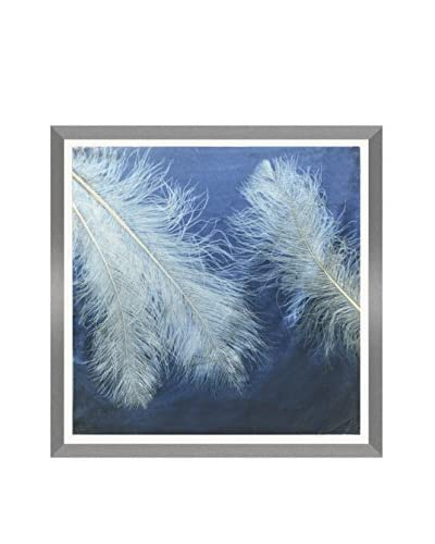 Aviva Stanoff Fancy Ostrich Feathers Hand-Pressed on Indigo Velvet Artwork