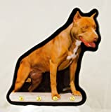 """AMERICAN PIT BULL TERRIER DOG KEY RING HANGER HOOK 6.5"""" X 9"""" WOOD WALL SIGN PLAQUE"""