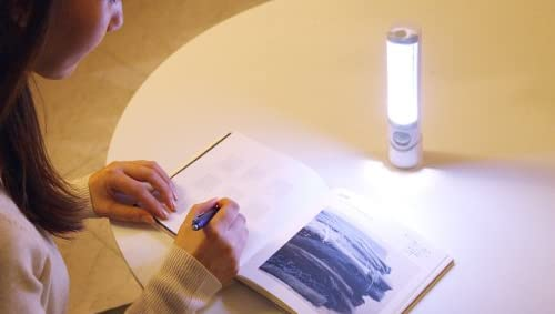 RITEX ライテックス 懐中電灯付LEDセンサースリム ASL-030