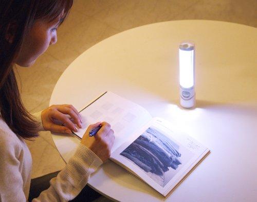 ムサシ RITEX 懐中電灯付LEDセンサースリム ASL-030