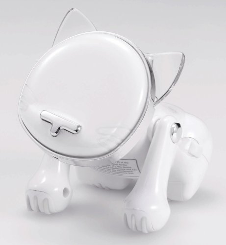 I-Cat Cat Scratchin' The Beat Usver.