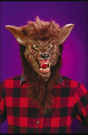 Costumes For All Occasions Fw8546Wb Werewolf Dlx Mask
