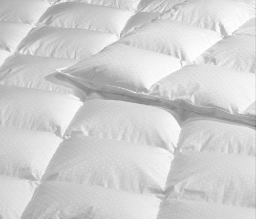 Highland Feather Manufacturing 45-Ounce Marseille European Down Duvet, White trespass highland