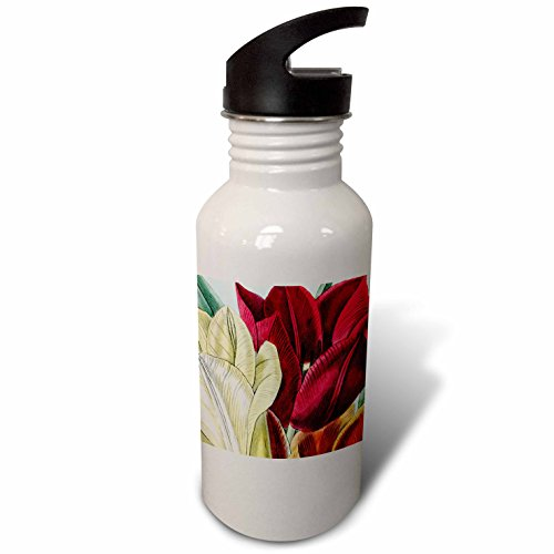 3dRose PS Vintage - Vintage Tulip Flowers - Flip Straw 21oz Water Bottle (wb_203816_2)