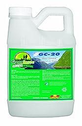 Simoniz G1383225 Green Scene GC-20 Non-Ammoniated Glass Cleaner, 2.5 gal Bottles per Case (Pack of 2)