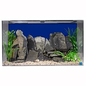 Seaclear 50 gal acrylic aquarium combo set for Sea clear fish tank