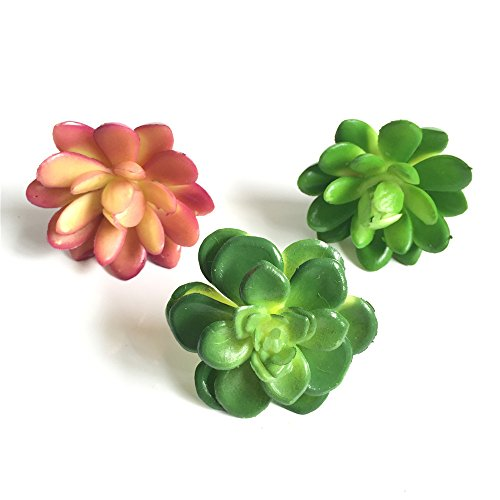 Lucky Six 3pcs Mini Artificial Succulent Plants ,Picks For Wedding ,Party,Home Decoration.