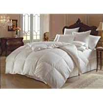 Downright Himalaya Collection 700 Fill All Year Weight Polish White Goose Down Comforters