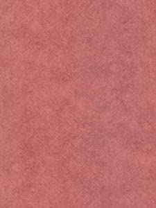 Wallpaper Brewster toile Impressions II FD45140