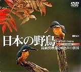 日本の野鳥/高画質映像と鳴き声の世界 [DVD]