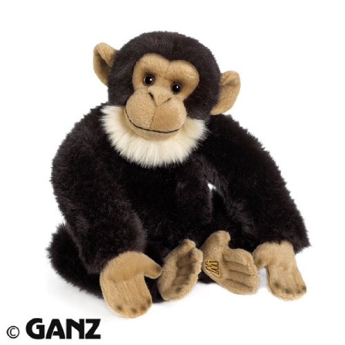 Webkinz Virtual Pet Plush - Signature Series - CHIMPANZEE [Toy]