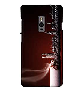 Go Yankee cigarette ash Back Cover For One Plus Two