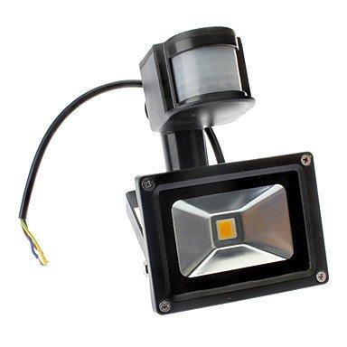 Infrared Sensor 10W 700-800Lm 2800-3500K Warm White Light Led Flood Lamp (110-240V)