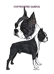 Boston Terrier - Double Image by Cindy Farmer