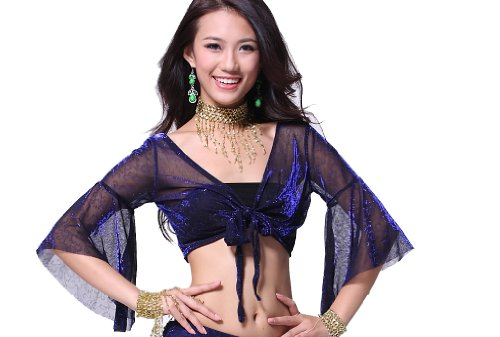 Feimei Lady's Belly Dance Butterfly Sleeve Top Flash silver cloth