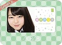 卓上 AKB48-128峯岸 みなみ カレンダー 2013年