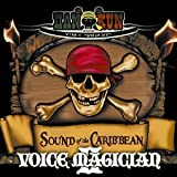 通常盤「VOICE MAGICIAN II~SOUND of the CARIBBEAN~」 / HAN-KUN (CD - 2010)