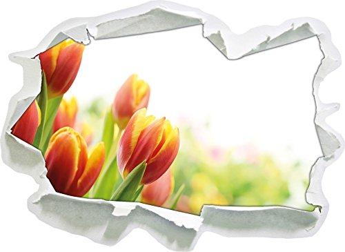 bunte-tulpenwiese-papier-3d-wandsticker-format-62x45-cm-wanddekoration-3d-wandaufkleber-wandtattoo