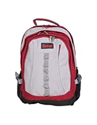 Scout Compact Polyester 18 Ltrs Maroon & Grey Backpack
