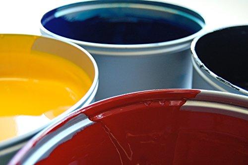 10-l-cemento-colore-rivestimento-per-pavimenti-garage-colore-rivestimento-cemento-vernice-trasparent