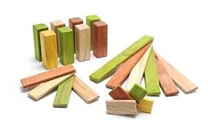 22 Piece Tegu Endeavor Magnetic Wooden Block Set, Jungle