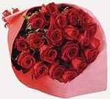 赤バラ花束20本【送料無料】