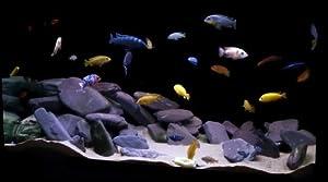 Decoration Aquascape Kit 10 PCS Aquarium Aquascape DIY Kit, Aquarium ...