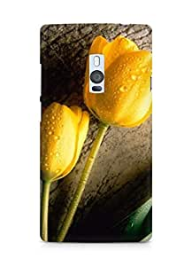 AMEZ designer printed 3d premium high quality back case cover for OnePlus Two (yellow rose)