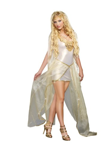 Dreamgirl Women's Sexy Mythical Elven Costume, Elf Princess
