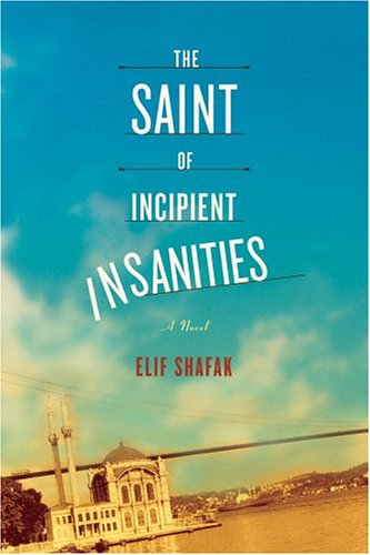 The Saint of Incipient Insanities: A Novel