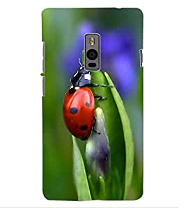 ColourCraft Lovely Creature Design Back Case Cover for OnePlus Two