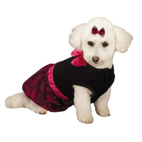 Zack & Zoey Heritage Collection Lace Print Dress for Pets, Small, Black цены онлайн