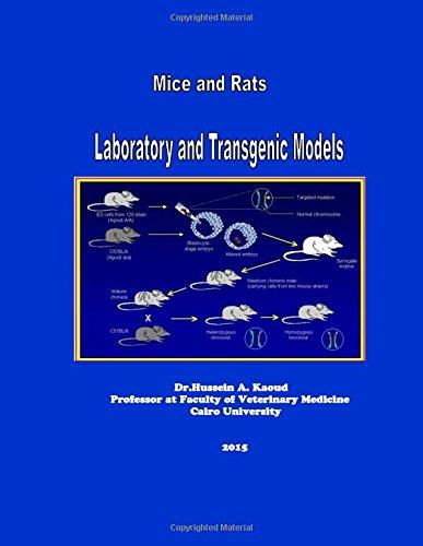 mice-and-rats-laboratory-and-transgenic-models