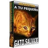 Adiestra a tu pequeño gato salvaje (Spanish Edition)