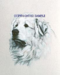 Great Pyrenees - Portrait by Cindy Farmer