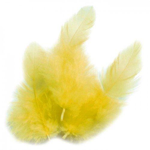 Piume di gallo 10 cm - giallo